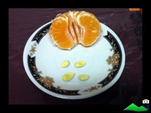 semillas mandarina